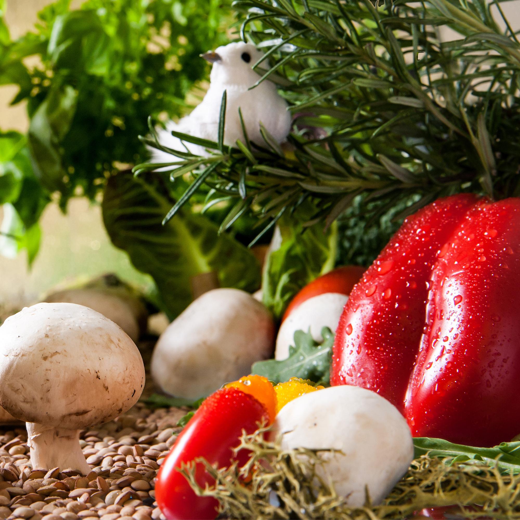orto peperoni funghi zucchine melenzane